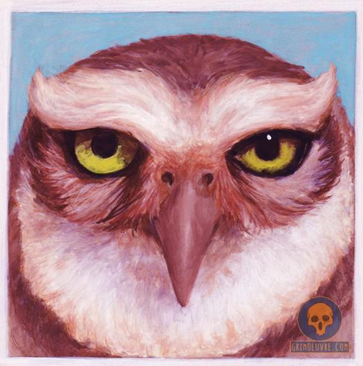 rupamgrimoeuvre_owl-portrait