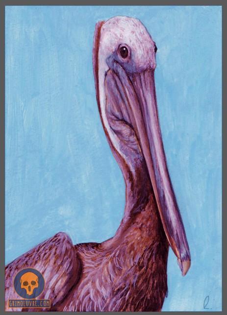 rupamgrimoeuvre_bird-portrait